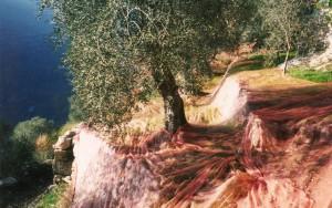Hidden Provence Slideshow 1